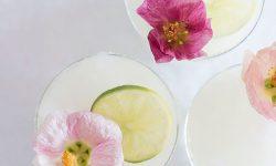 Drinks for Your Functions In Melbourne - Frozen Margaritas