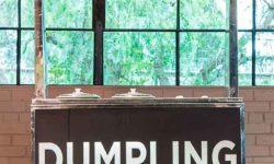 Dumplings Food Cart For Events